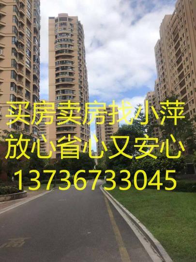 /2020/11/05/16/42/38121798.jpg