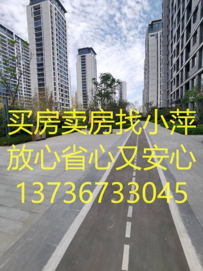 /2021/03/01/15/05/13186918.jpg
