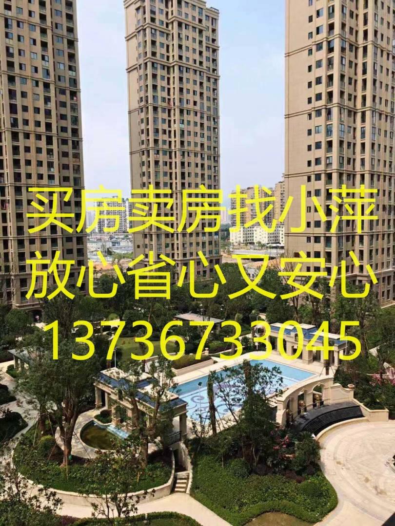 /2020/11/05/16/38/53121793.jpg
