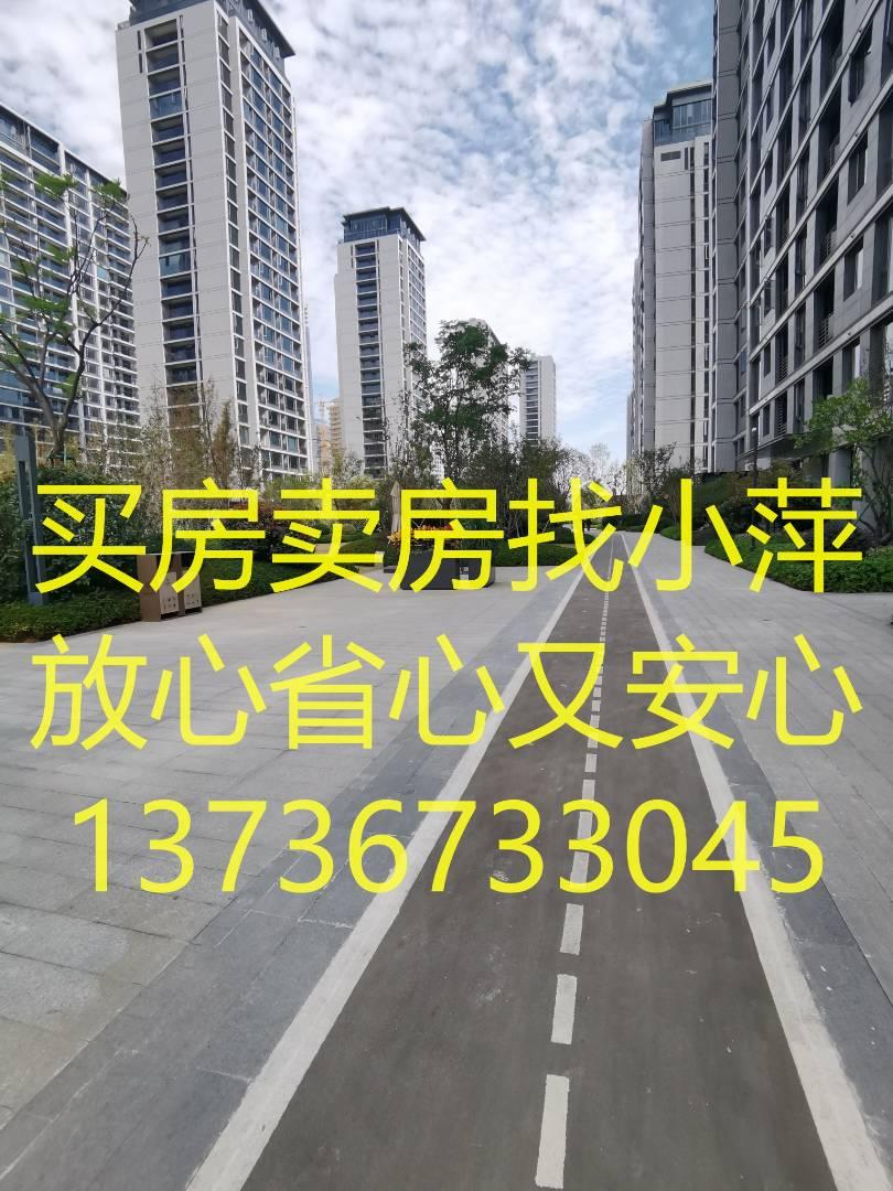 /2021/03/03/15/43/11101368.jpg